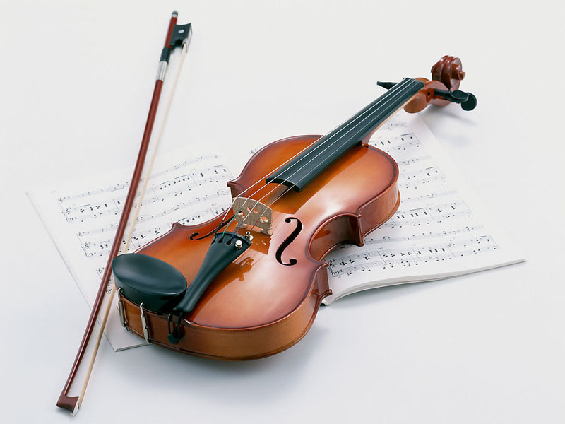IMI Individual Violin Lessons Beginner-Grade3 2018-2019 Term1