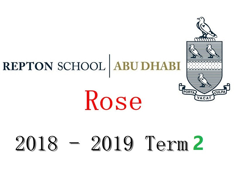 Repton Rose Individual Ukulele Lesson 2018-2019 Term2