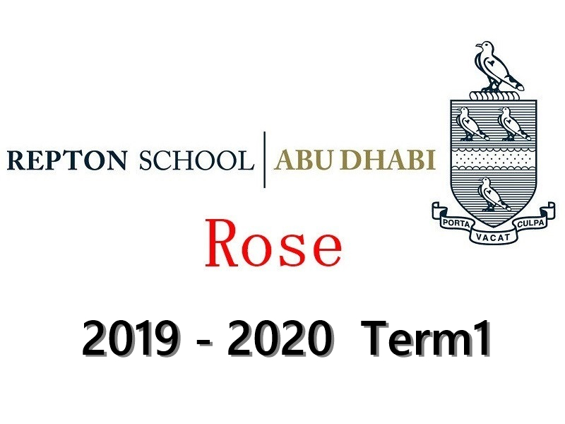 Repton Rose Individual Drums Lesson 2019-2020 Term1